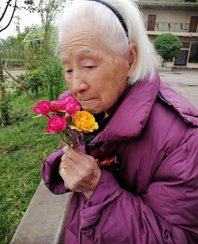 户外菜花活动